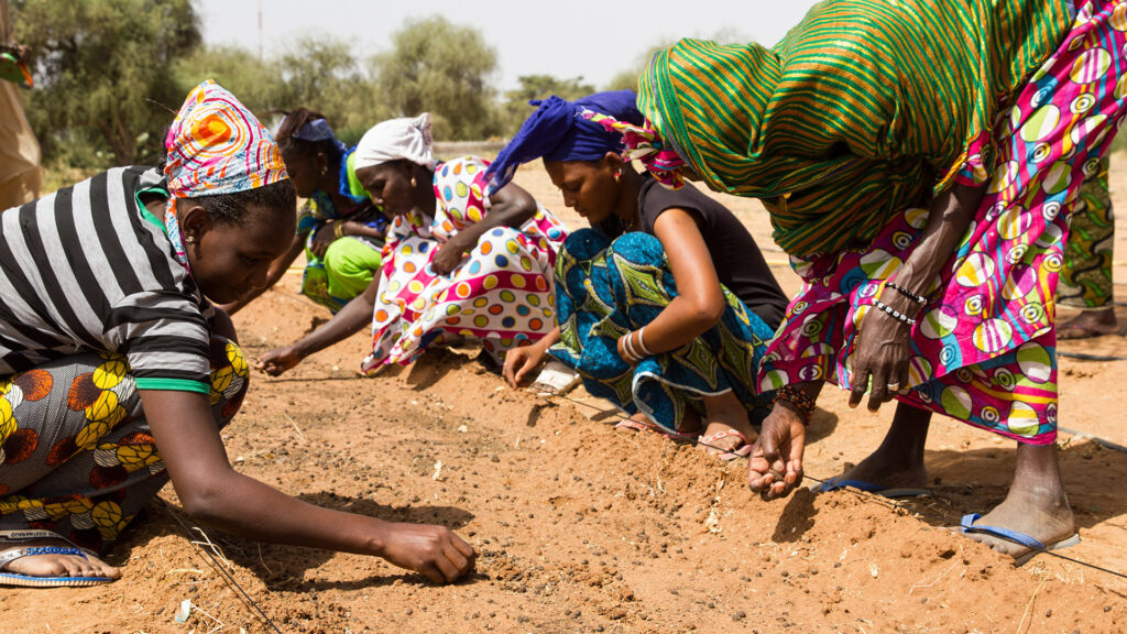 Great Green Wall Initiative Receives More Than $14 Billion Boost to Green the Sahel